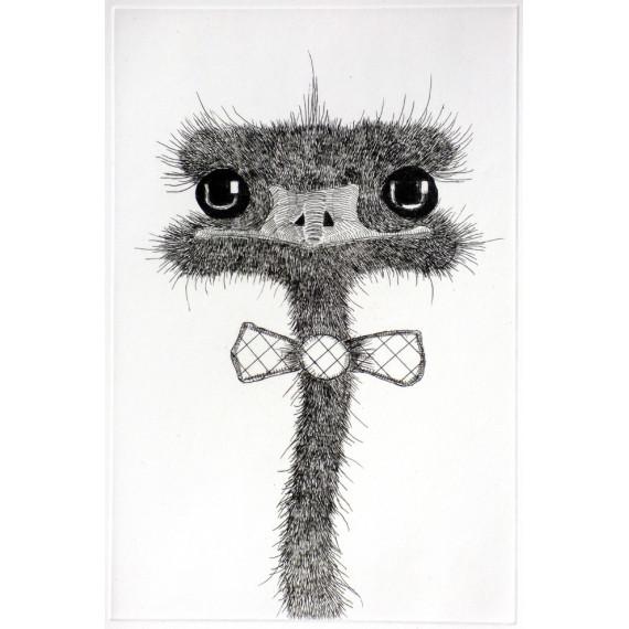 Etching The ostrich by Matt_tieu