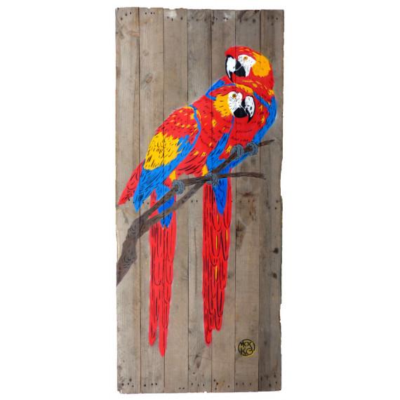 The Aras - The Parrots