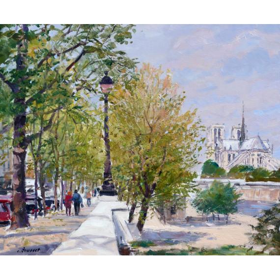 Printemps à Paris Vue de la Seine et Notre-Dame