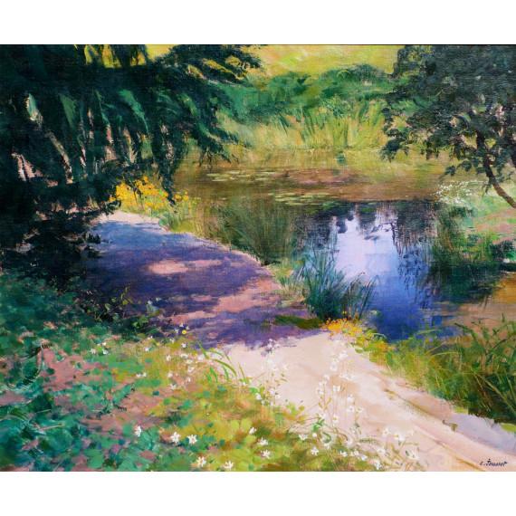 L'ombre sur l'étang