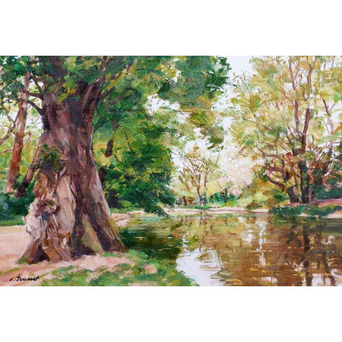 Le vieil arbre au bord de l'étang