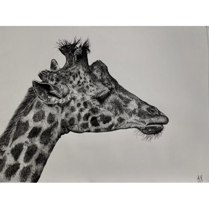 The Girafe