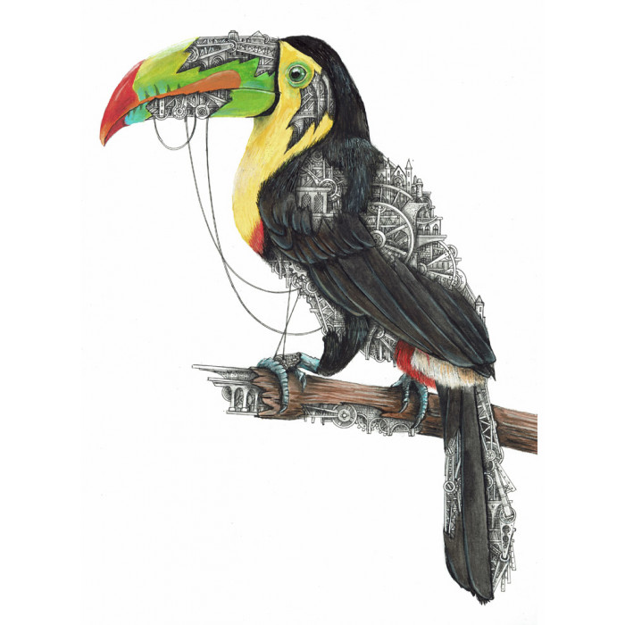Toucan mechanimal