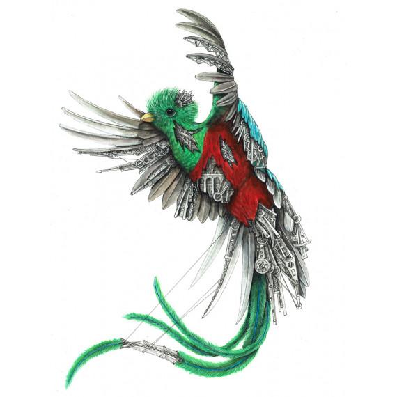 Quetzal mechanimal