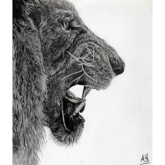 dessin - Le lion-alexis-raoult