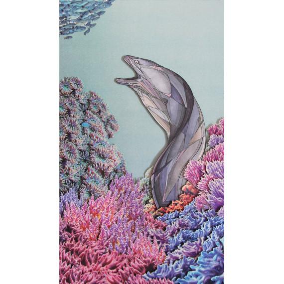 « Murène commune (Muraena helena) » - en collaboration avec Julie Aubourg