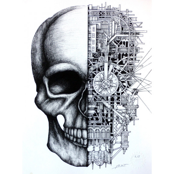 The Mechanimal Skull