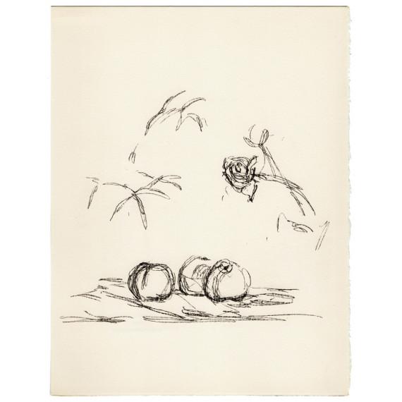 Alberto Giacometti - Fleurs - Lithographie originale