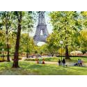 La Tour Eiffel et le Jardin du Trocadéro  à Paris