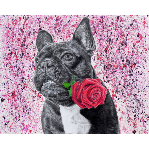 Le bouledogue à la rose