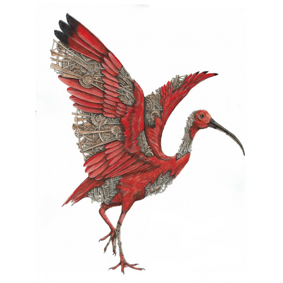 Red Ibis  Mechanimal