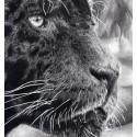 Drawing - Black jaguar alexis raoult