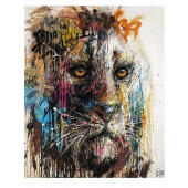 Limited Edition : Urban Lion