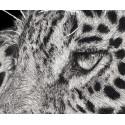 Drawing - Simara, Le Jaguar