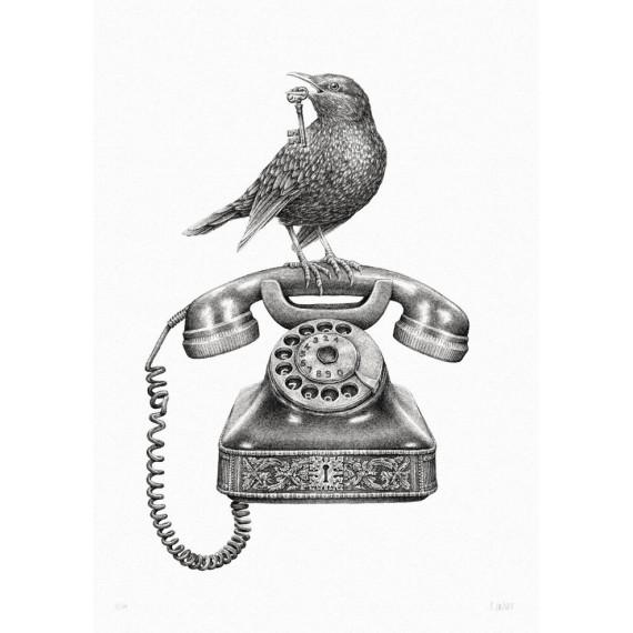 Steeven Salvat - Call me