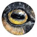 Eye by V. - Animal n°4 - Désiré