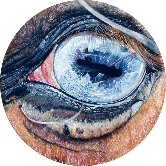 Eye by V. - Animal n°3 - Just