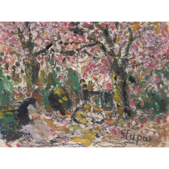 Les cerisiers japonais dans le jardin parisien