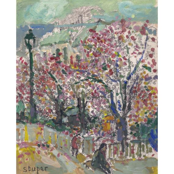 Japanese cherry trees in Paris