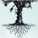 Jaëraymie - édition limitée - Omofone 2 chene-chaine