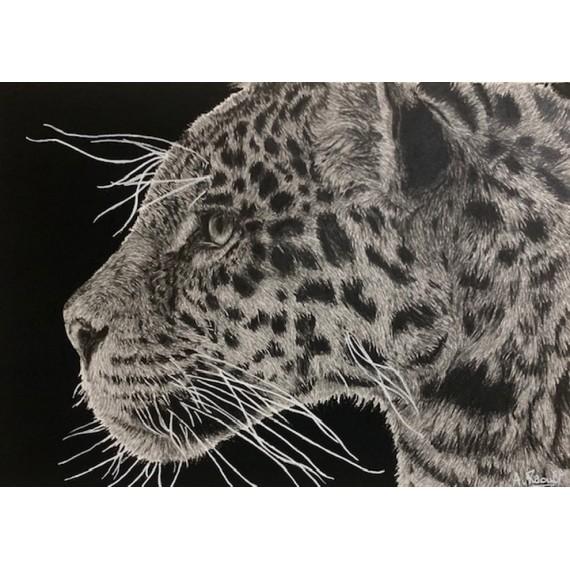 Drawing - Simara, le Jaguar, Ménagerie
