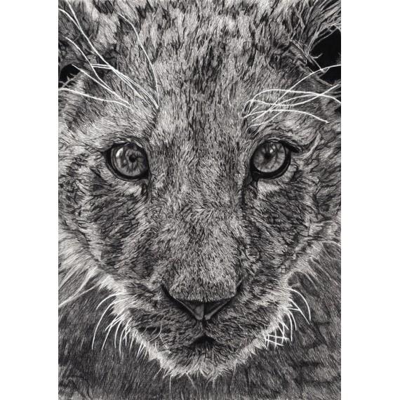 Limited edition - Léo, Le Lionceau, Thoiry