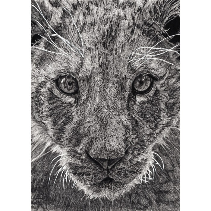 Tirage limité - Léo, Le Lionceau, Thoiry