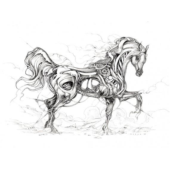 Horor - Horse Study 1